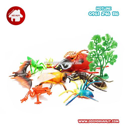 Bộ đồ chơi động vật côn trùng