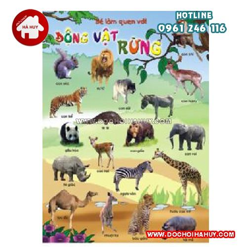 tranh-dong-vat-rung